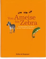 Reihen- und Buchgestaltung mit Illustrationen für die Berliner Morgenpost